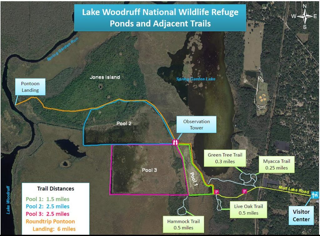 Lake Woodruff Map